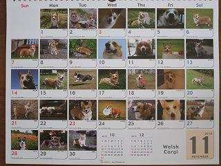 365カレンダー(11月)