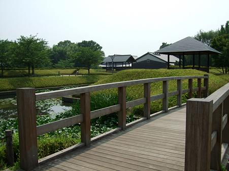 090621_難波田城公園_60