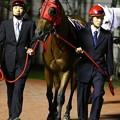 写真: コテキタイ-120613-01-large