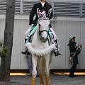 写真: 川崎競馬の誘導馬04月開催 桜Verその2-120409-01-large