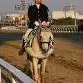 川崎競馬の誘導馬04月開催 桜Verその2-120409-06-large