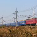 EF81-138+24系客車青森車