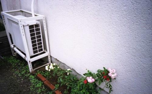 壁と小さな花壇