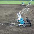 写真: 西田直斗