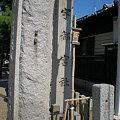 Photos: 宇都宮神社_02