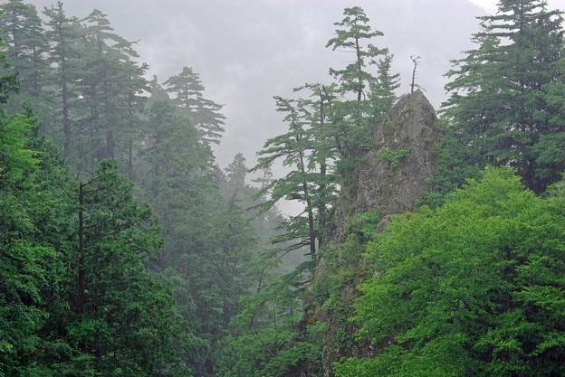 雨中の深い谷