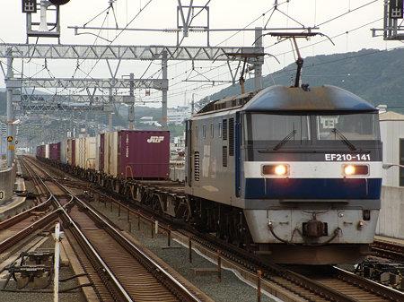 DSCN7991