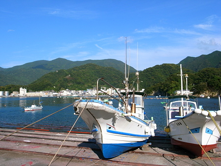 田子・瀬浜海岸の港