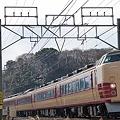 Photos: 成田山初詣臨時列車 183 189系田町車6両