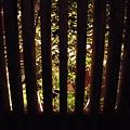 写真: 囲いとライト