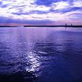 写真: 冬海