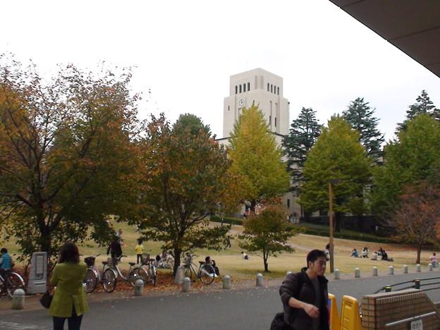 東工大の秋