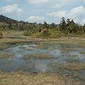 写真: Kinunuma12