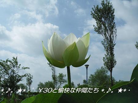 DSCF0047_pa