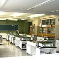 Photos: 調理室