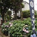 Photos: R0018117