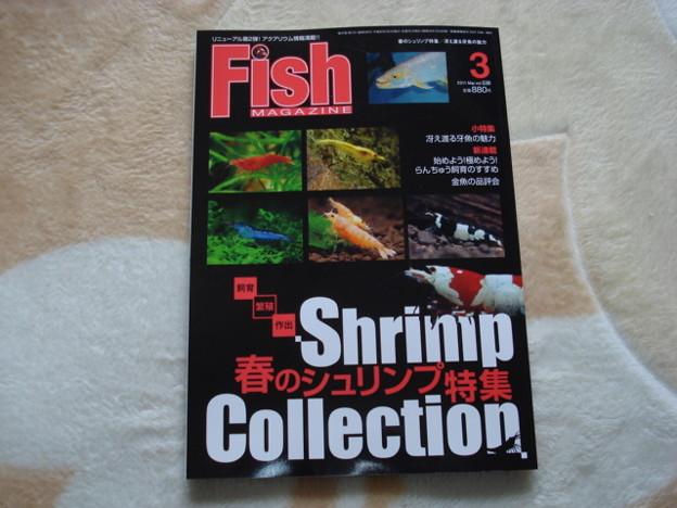 20110211 フィッシュマガジン3月号