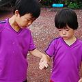 Photos: 雲見オートキャンプ場088