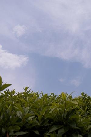 2009-06-17の空