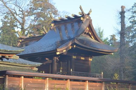 鷲宮神社・本殿