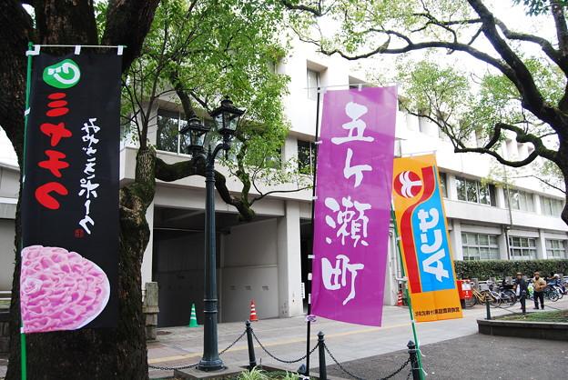写真: 第1回宮崎県市町村対抗駅伝競走大会2