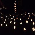 写真: 徳満寺 地蔵まつり 竹灯篭1