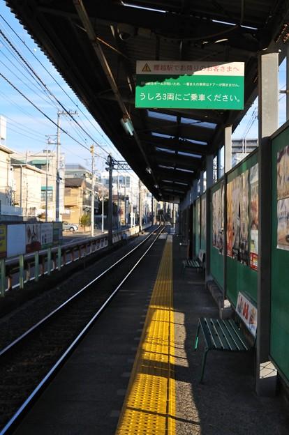 写真: 20110101_080426