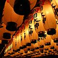 写真: 道頓堀-法善寺