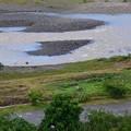 台風一過の相模原市の大島付近の相模川の濁流__6349