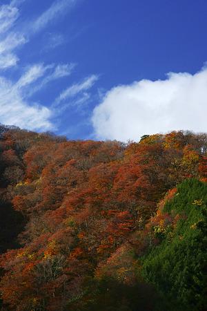 三国山の朝