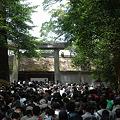 Photos: 20110502_伊勢神宮 内宮(皇大神宮) 御正宮(ごしょうぐう)
