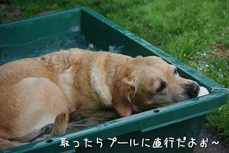s-myu2009_0702(102)