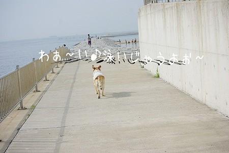 s-myu2009_0718(021)