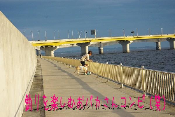 s-myu2009_0823(015)