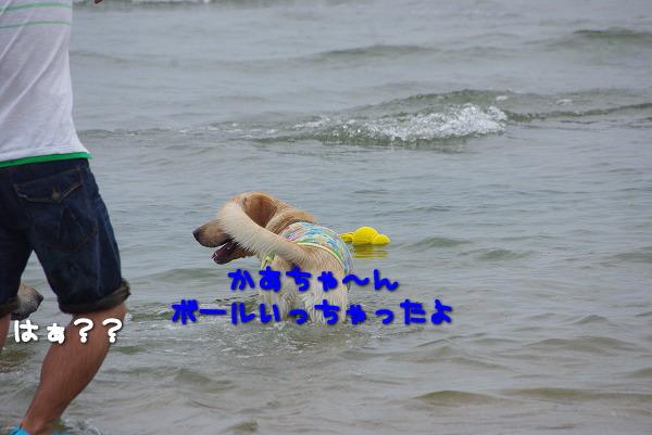 s-myu2009_0829(203)