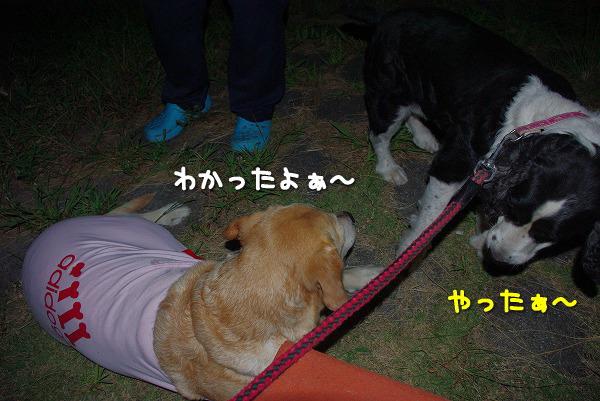 s-myu2009_0831(026)