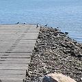 写真: Boat Ramp 8-27-09