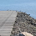 Boat Ramp 8-27-09