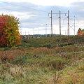 Photos: Power Line1 10-8-09