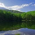 写真: 白鹿の池