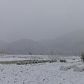 雪の降る山