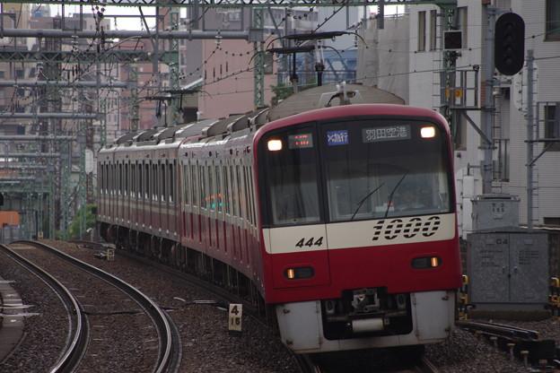 IMGP5981