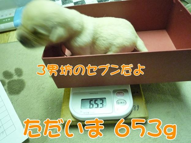 体重測定0008