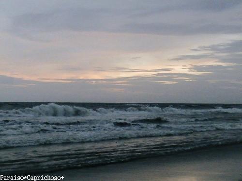 Photos: バリ、最後の日の海