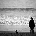 写真: 曇った海