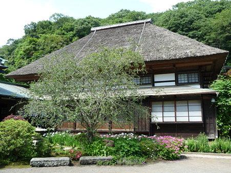 090612-海蔵寺 (17)