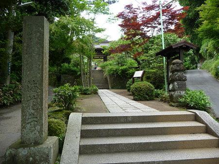 090612-海蔵寺 (1)