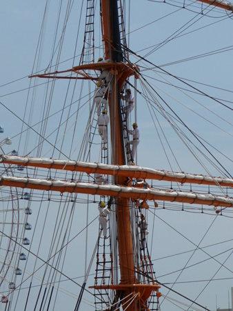 090720-日本丸 総帆展帆 (24)