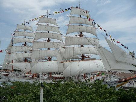 090720-日本丸 総帆展帆 (104)
