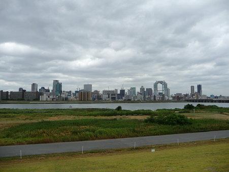 090831-淀川河川敷 (13)